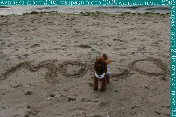 20080523-09.jpg
