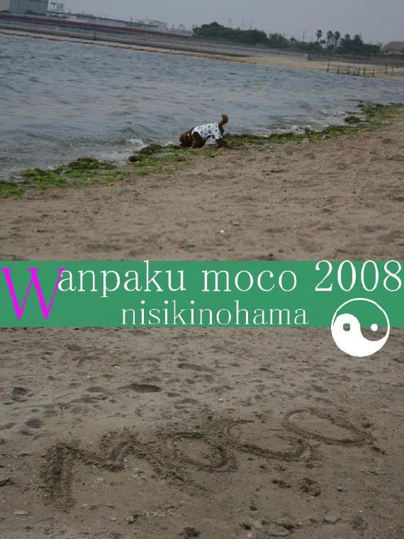 20080523-10.jpg