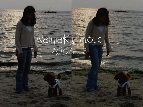 20080523-14.jpg