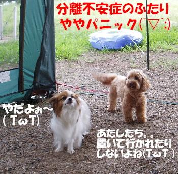 琵琶湖2-1