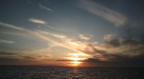日本海 鯵(あじ)釣り 乗り合い 夕日