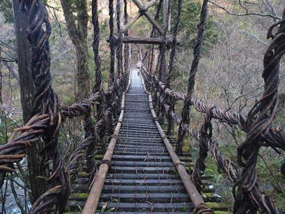 剣山下山口のかずら橋
