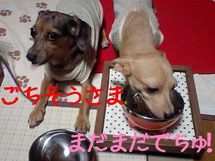 ご飯ご飯♪