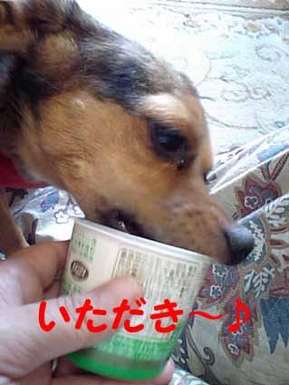 いただき~♪