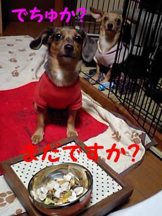 ご飯は別腹?