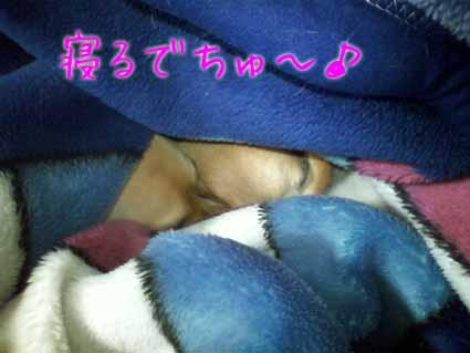 寝るでちゅ~♪