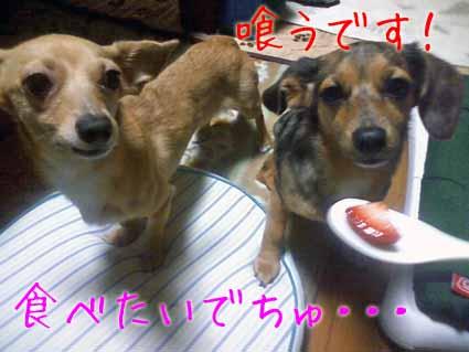 食べたい~
