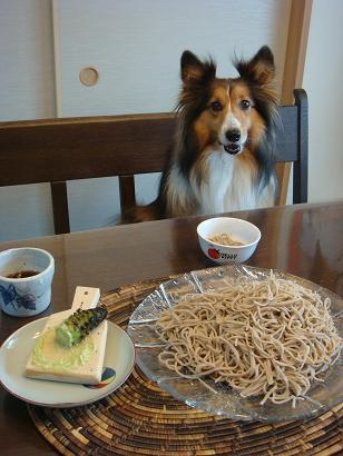 今日のお蕎麦は?