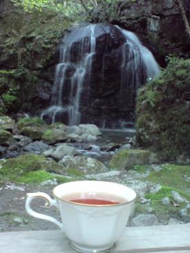 tea2_convert.jpg