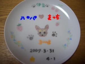 20070408230817.jpg