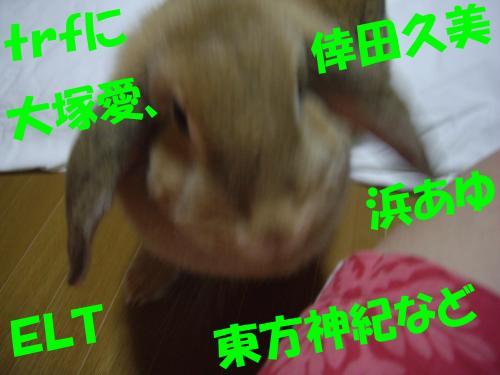 IMGP1372_convert_20080805232242.jpg
