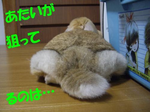 atai_convert_20080610002441.jpg