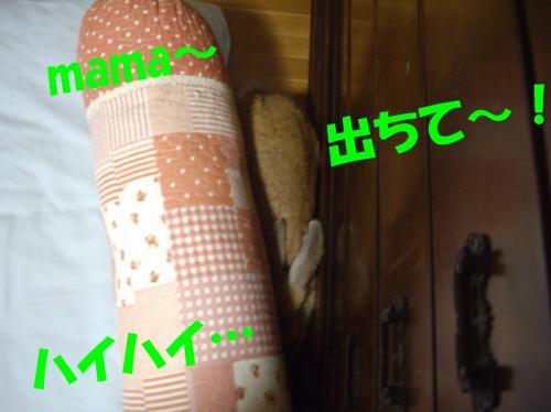dachite_convert_20080704224823.jpg