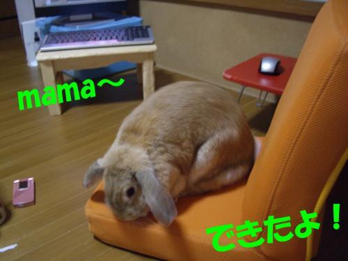deketa_convert_20080620105232.jpg