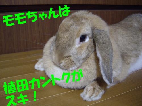 kanntoku_convert_20080607001013.jpg