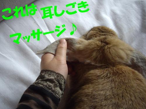 mi_convert_20080628223057.jpg