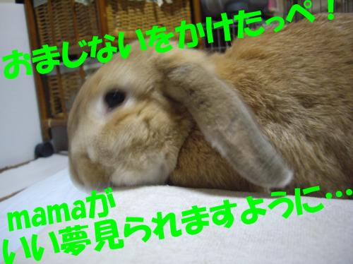 omajinai_convert_20080613104157.jpg
