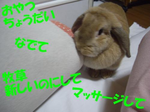 oyatu_convert_20080530234958.jpg