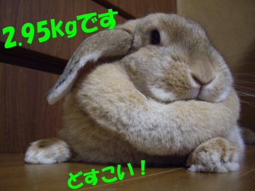 taijuu_convert_20080527194010.jpg