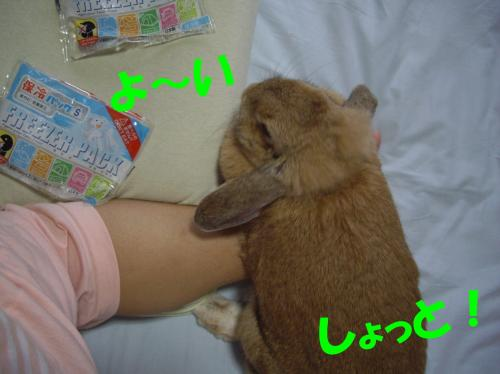 yoisho_convert_20080707222141.jpg