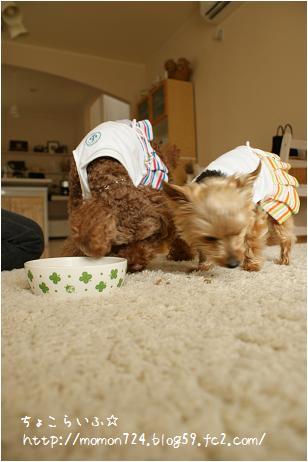 ミミ&ココ