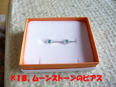 P1010388 ③