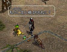 20060712213151.jpg