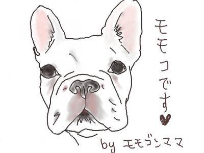 momoko_1.jpg