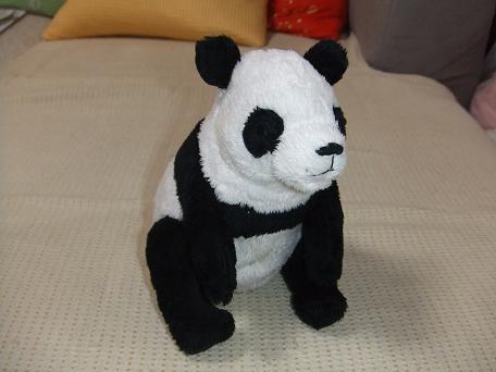 パンダです