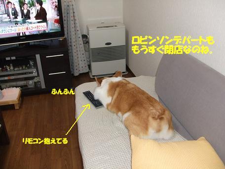 TV見てる