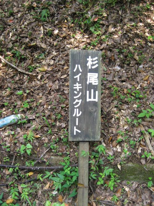 黒川キャンプ場(杉尾山1)