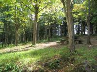 飛騨古川町森林公園キャンプ場2