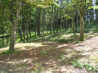 飛騨古川町森林公園キャンプ場4