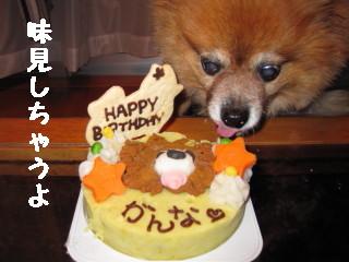 dかんなケーキ