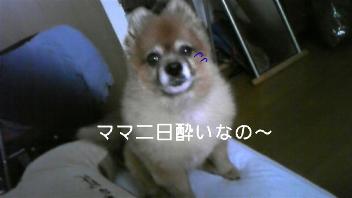 20090529181254.jpg