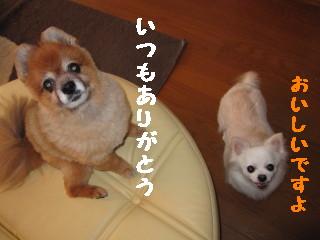 IMG_1002.jpg