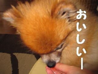 IMG_1217.jpg