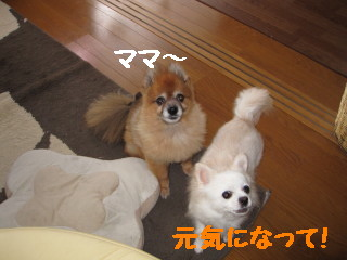 IMG_1502.jpg