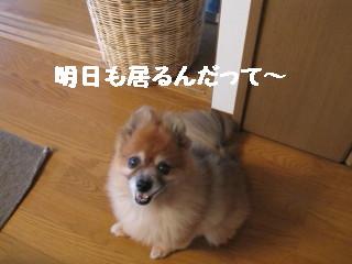 IMG_1551.jpg