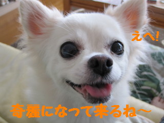 IMG_1581.jpg