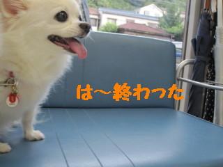 IMG_1594.jpg