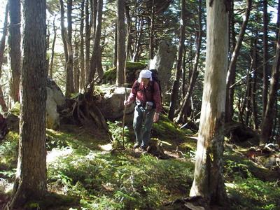 IMGP2240_樹林の中を行く