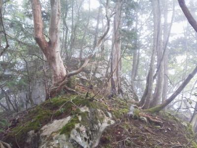 9 ソバカド山400P1001012