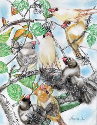 文鳥パラダイスWEB