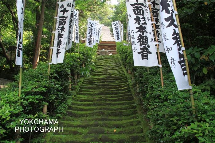 IMG_8008_杉本寺