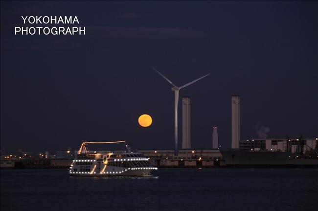 IMG_1410_moon1-11_1.jpg