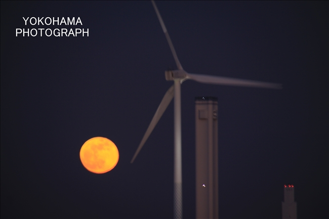 IMG_1413_moon1-11_1.jpg