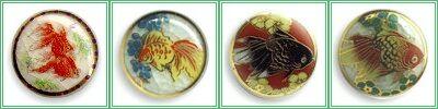 薩摩ボタン金魚