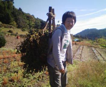 20081029121724.jpg