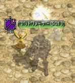 Angel501.jpg